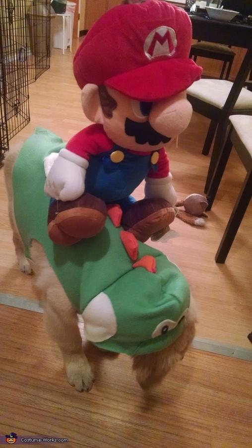 Yoshi and Mario 2, Yoshi Costume