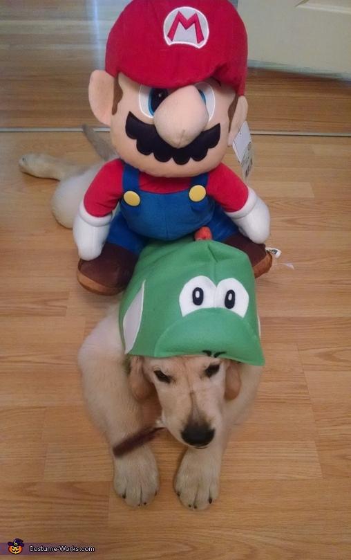 Yoshi and Mario 3, Yoshi Costume