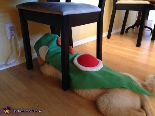 Yoshi under chair, Yoshi Costume