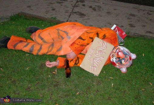 Zanesville Ohio Tiger - Homemade costumes for adults