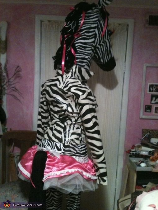 back and side view, Disco Zebra Costume