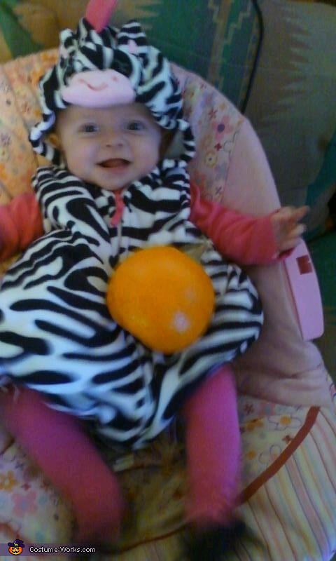 Cute Zebra Baby Costume