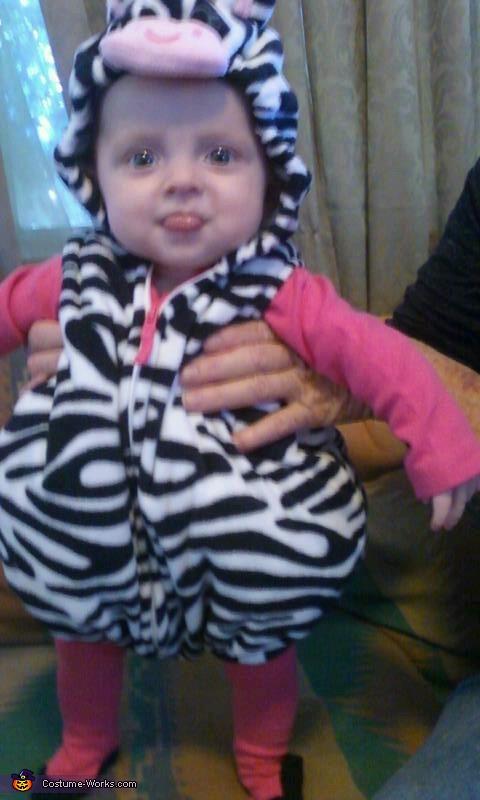Baby zebra, Cute Zebra Baby Costume