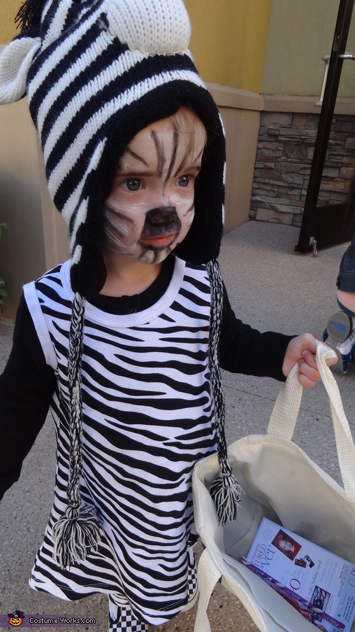 Zebra Trick-or-Treats for the First Time!, Zebra Baby Costume