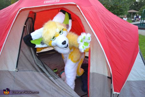 ZipZap Camping, ZipZap Costume