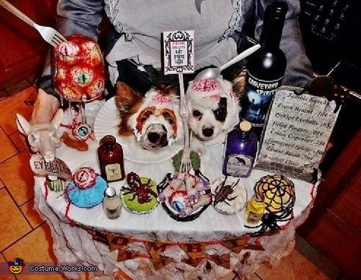 Closeup of Dogs and Snacks, Zombie Snacks Costume