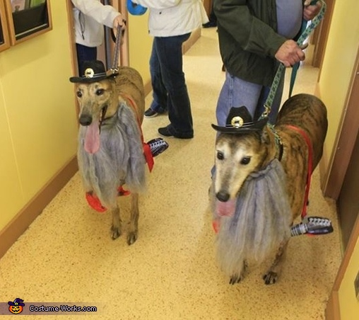 ZZ Top Dogs Costume