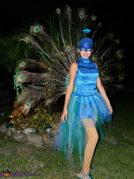 Animal costume ideas for girls: Beautiful Peacock Costume