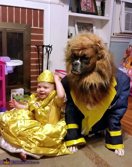 Costume ideas for pets and owners - Beauty and the Beast Costume
