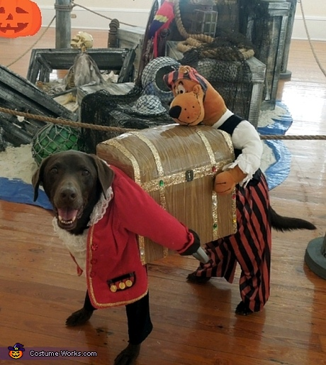 Creative costume ideas for dogs - Dog Pirate Carrying Treasure Costume