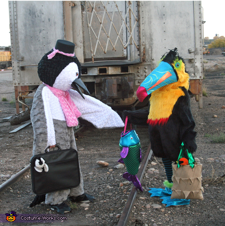 Animal costumes for girls: Penguin and Toucan Costumes