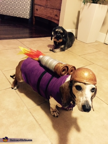 DIY costume ideas for dogs - The Rocket Dog Costume