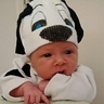 Photo #4 - Noah's first Halloween