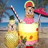 Photo #1 - Pina Colada Dogs