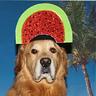 Photo #2 - The Watermelon Slice Hat