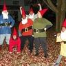 Photo #1 - The Garden of Gnomes 1