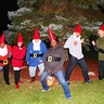 Photo #2 - The Garden of Gnomes 2