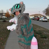 Photo #4 - Cheshire Cat!