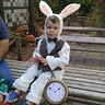 Photo #2 - Hudson as the White Rabbit