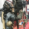 Photo #5 - Predator back