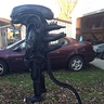 Photo #5 - Alien Xenomorph