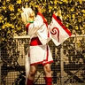 Photo #5 - Amaterasu from The Game OKAMI