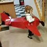 Photo #4 - Amelia Earhart Airplane