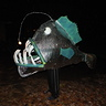 Photo #1 - Angler Fish