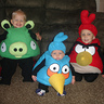 Photo #1 - All my angry birds