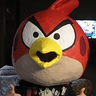 Photo #2 - Angry Birds
