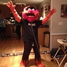 Photo #1 - Animal (Muppet)