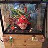 Photo #1 - The finished aquarium!