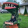 Photo #2 - Audrey 2 - Little Shop of Horrors