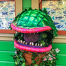 Photo #2 - Audrey II