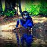 Photo #2 - Avatar Ninja