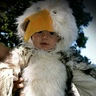 Photo #2 - Baby Bird