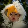 Photo #3 - Baby Bird