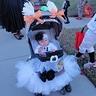 Photo #5 - Baby Boo