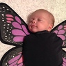 Photo #3 - Baby Butterflies