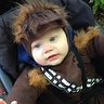 Photo #3 - Baby Chewbacca