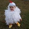 Photo #2 - Cutest chick in the barn