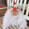 Photo #5 - Baby Chicken