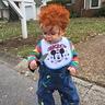 Photo #1 - Chuckys favorite toy