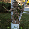 Photo #1 - Baby Groot Full