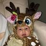 Photo #3 - Baby Deer