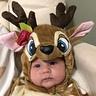 Photo #4 - Baby Deer
