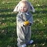 Photo #2 - Baby Elephant