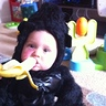Photo #1 - Baby gorilla love bananas!