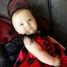 Photo #2 - Baby Ladybug