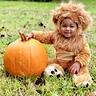 Photo #3 - Baby Lion